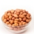 Buy Indian Peanut or Groundnut