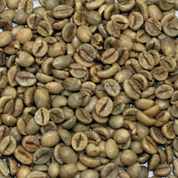 Buy High quality green coffee beans for in China on Alibaba.com