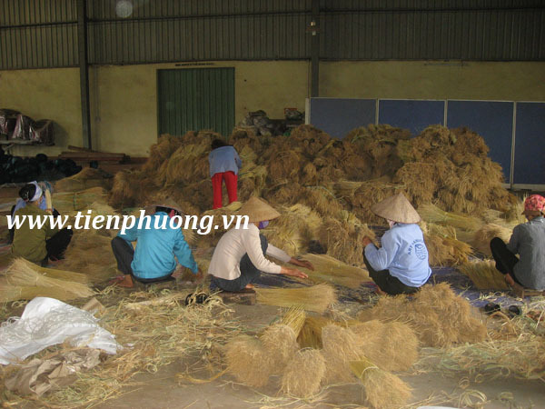 VIETNAM GRASS BROOM PLASTIC HANDLE EXPORT DIRECTLY FROM FACTORY