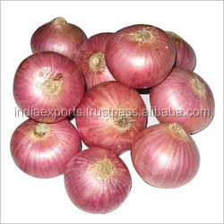 Fresh Red onions for sale In 3 kg,5 kg,Red Mesh Bag