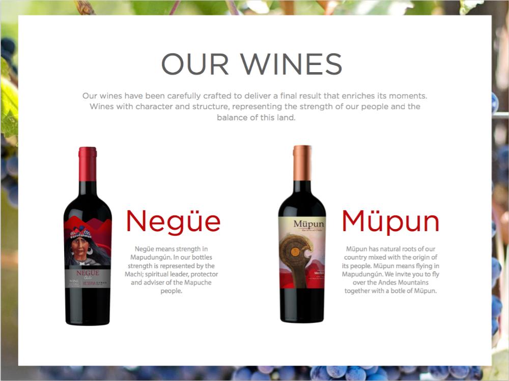 Ayun Wines Castillo Aguero Wine Of Chile Maule Valley
