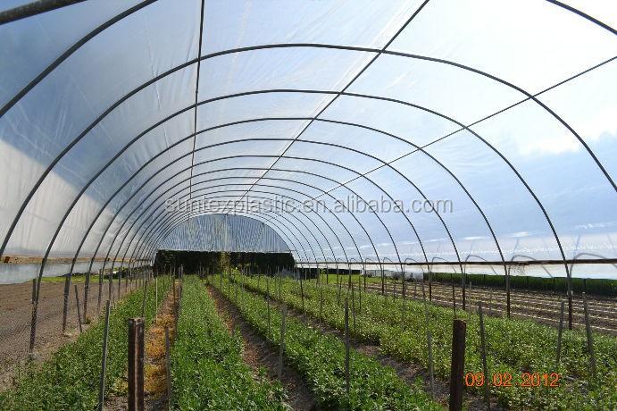 Greenhouse Clear Plastic Film Polyethylene Greenhouse Film