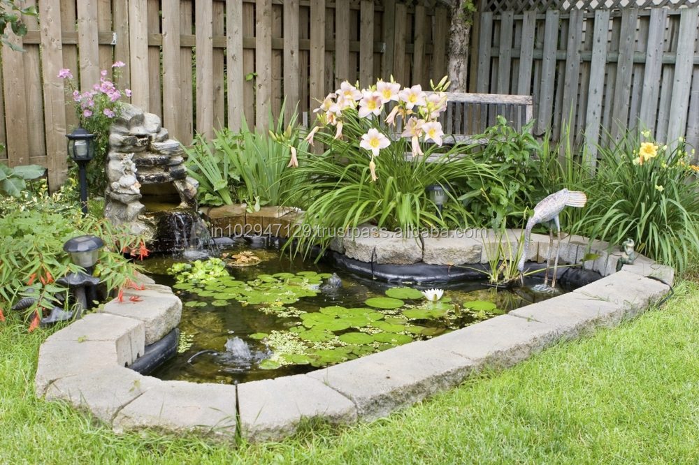 Probiotic Culture For Garden Pond Cleaning Buy Controls