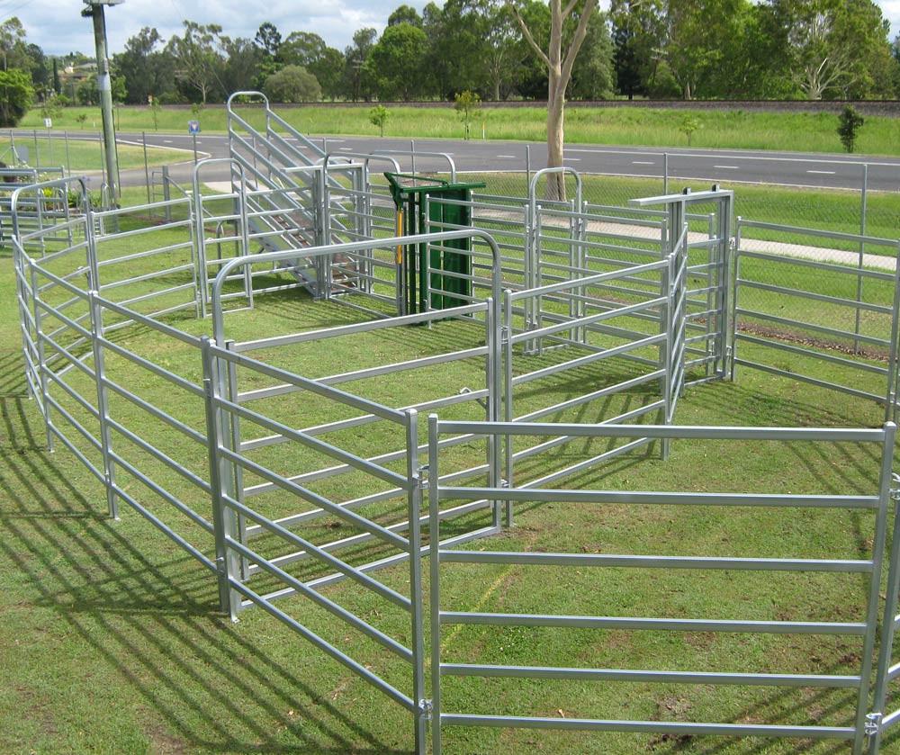 Steel Pvc Cattle Yard Panels / Cattle Panels / Corral ...