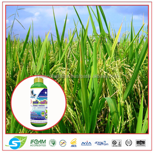 High Quality Liquid Fertilizer Organic Nano Amino