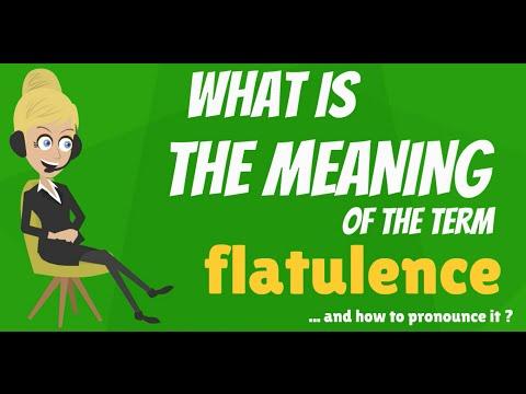 High Quality FLATULENCE Meaning, Definition U0026amp; Explanation
