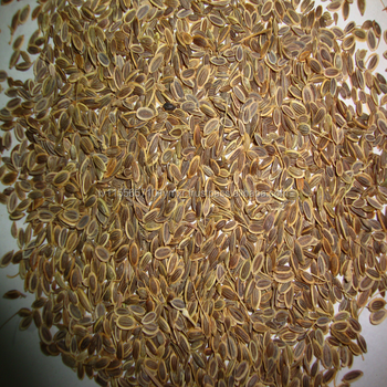 Dill Seed Close Type * Dill Seed Open Type,Linseed
