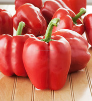 Professional Spices Manufacturer Dehydrated Red Bell Pepper