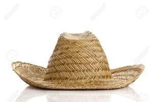 bdb51e88fcd Vietnam Palm Leaf Hats Wholesale