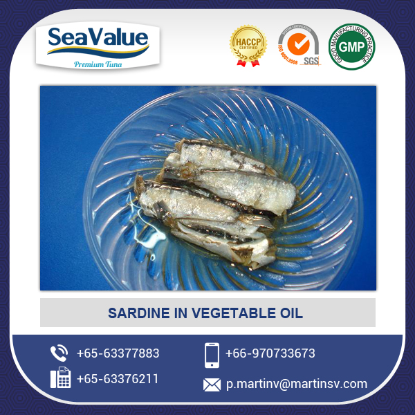 Market Demanded Quality Canned Sardine in Oil (125g)