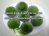 Fresh green lime with seed and seedless, excellent quality from Vietnam