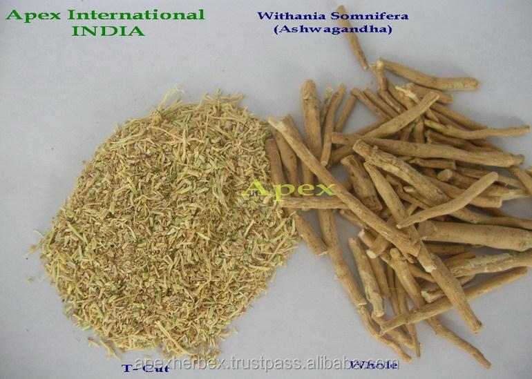Withania Somnifera Roots / Indian Ginseng Roots / Ashwagandha ...