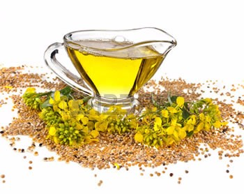 Image result for essential mustard oil