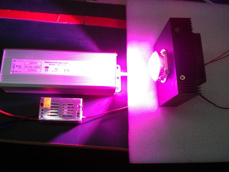 Wholesale Led Grow Light Kit Diy Cob Full Spectrum Grow Light 50w Led 50 Driver Heat Sink Lens Fan For Hydroponics Greenhouse Cheap Led Grow