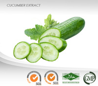 Cucumber Liquid Extract : Caffeic Acid : Natural skin emollient and Moisturizing, Astringent, Hair treatment