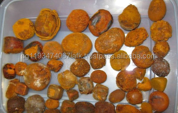 Quality Cow,ox,cattle Gallstones for sale