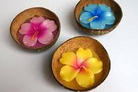 Candles in Coconut shell