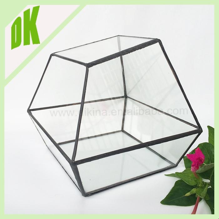 pas cher exo terra rainforest kit conteneurs terrariums. Black Bedroom Furniture Sets. Home Design Ideas