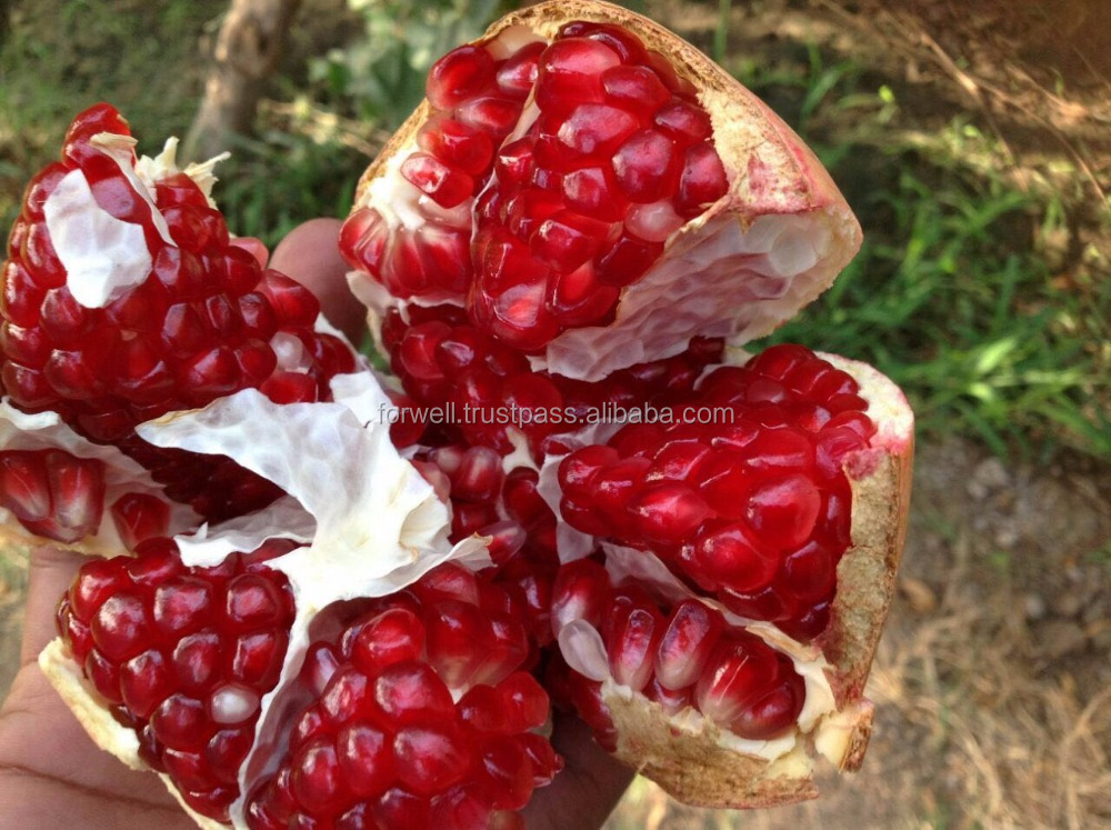 Frozen and Fresh : Pomegranates .