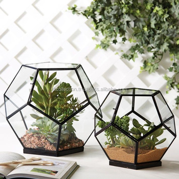 Large Glass Globe Terrarium Kit Home And Living Beach Terrarium