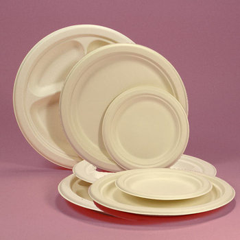 DISPOSABLE BIODEGRADABLE PAPER PLATE WITH COMPARTMENT FROM DUBAI & Disposable Biodegradable Paper Plate With Compartment From Dubai ...