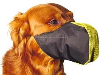 Tenerone cane museruola buy product on for Ispezione finale a casa