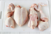 Frozen Whole Chicken/Feet/Paws/Leg/Breasts/Certified BRAZIL Quality Halal Frozen Whole Chicken and Parts / Gizzards / Thighs