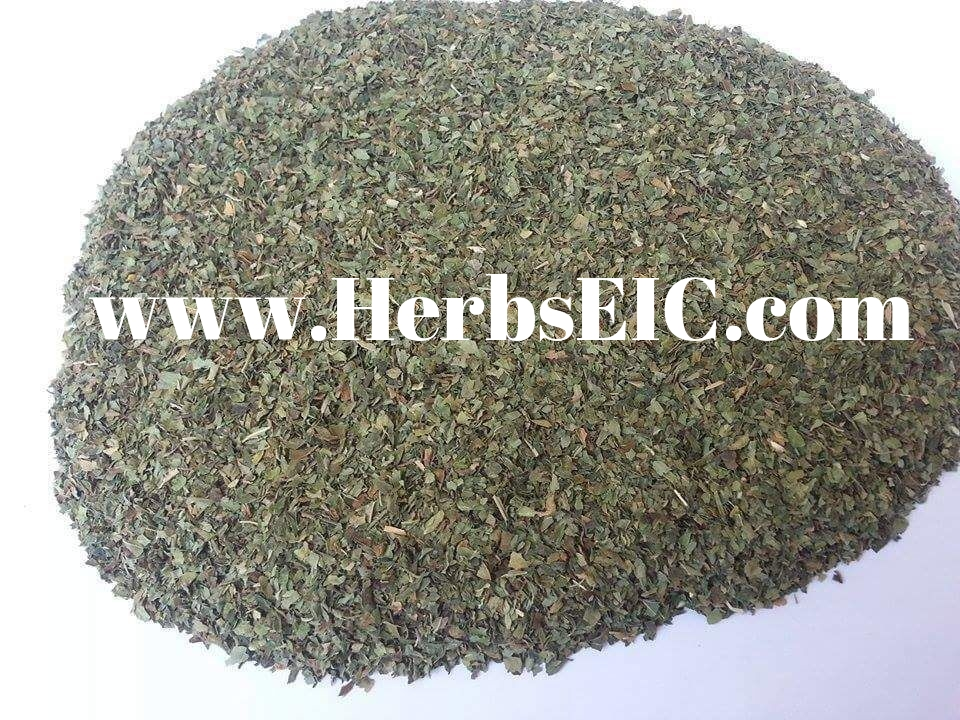Air dried basil leaves l Spice of Basil l dried Basil pictures l ISO factory l Egypt