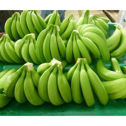 New Crop Fresh Cavendish Banana