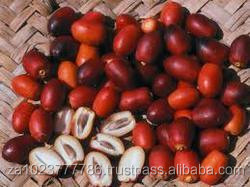 Red Dry Dates/High quality red dates supplier Grade A Red Dry Dates HOT SALES