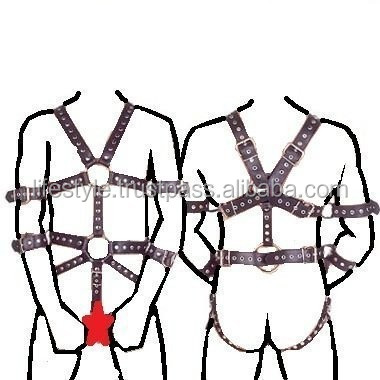 Four Point Harness