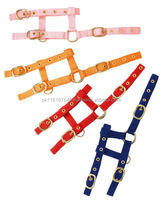 Nylon Adjustable Headcollar/Halter with Short Lead Rope - 14 colours!-Equestrian -Horse Riding Gears -Horse Equipments