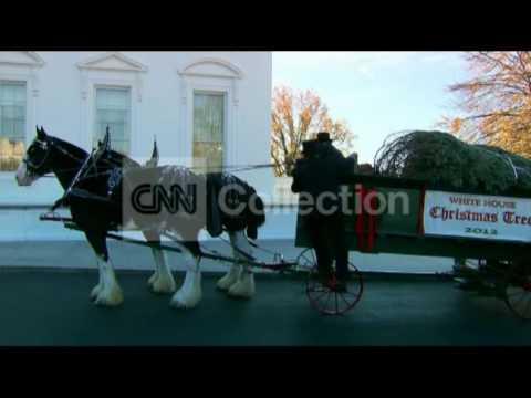 WHITE HOUSE XMAS TREE- HORSES ARRIVING W/ TREE