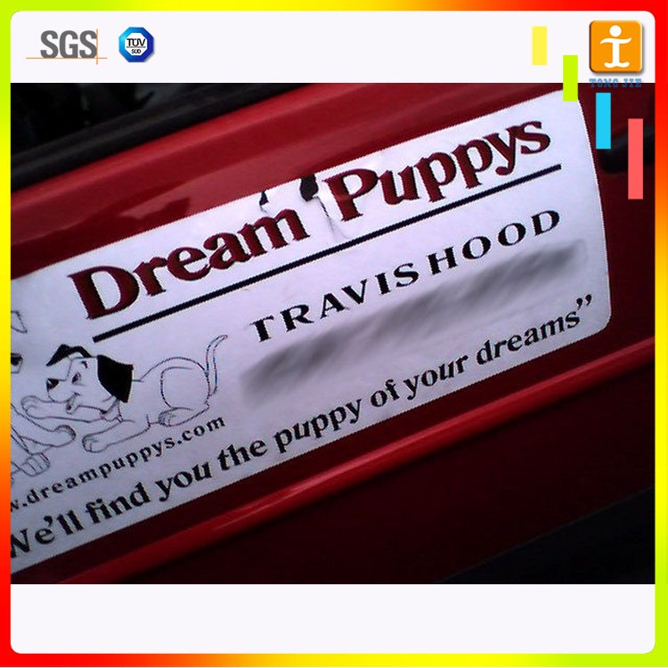 Custom Oval Shape Vehicle Door Magnetic Bumper StickersCustom Car - Custom car magnets oval promote your brand