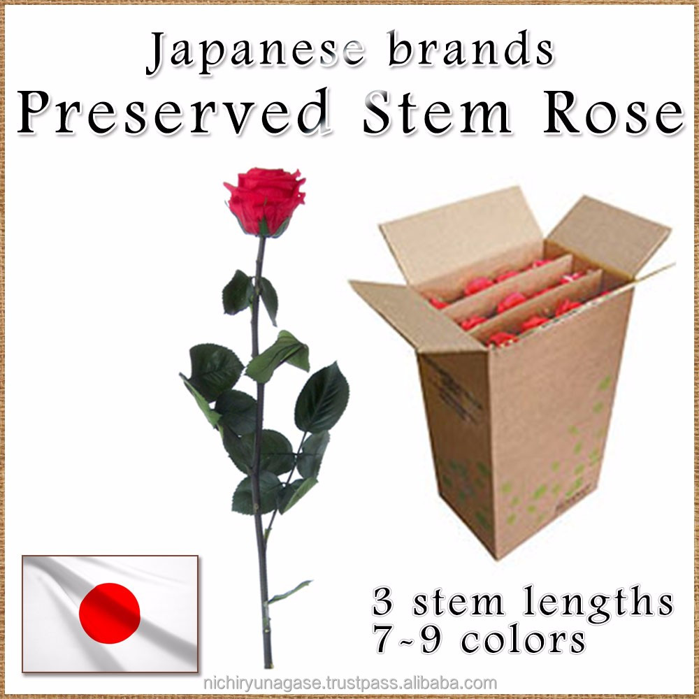 Beautiful preserved stem rose with various colors , small lot order available