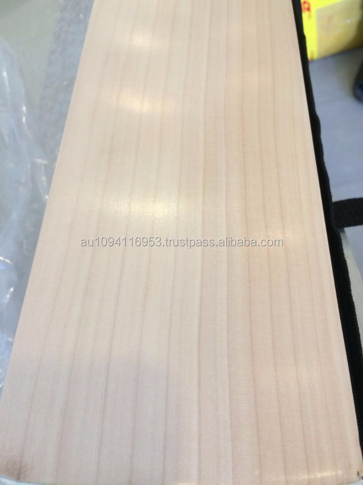 Plain Grade 1 english willow cricket bat