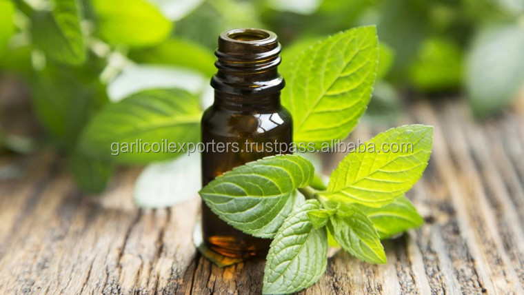 Peppermint Oil Natural And Pure