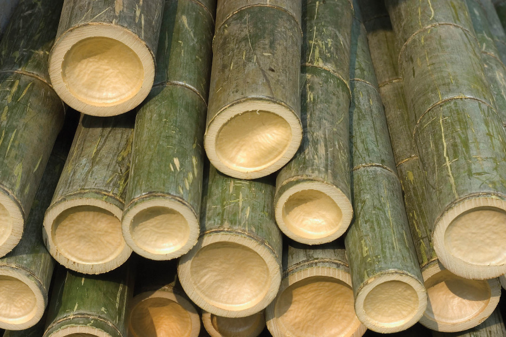 Straight dry polished bamboo poles from vietnam buy for Uses for bamboo canes