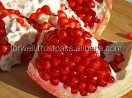 pomegranate---we export fresh pomegranate in large quantity to world market
