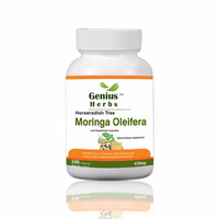 The No.1 Indian Moringa Malunggay Capsules 420 mg for Export