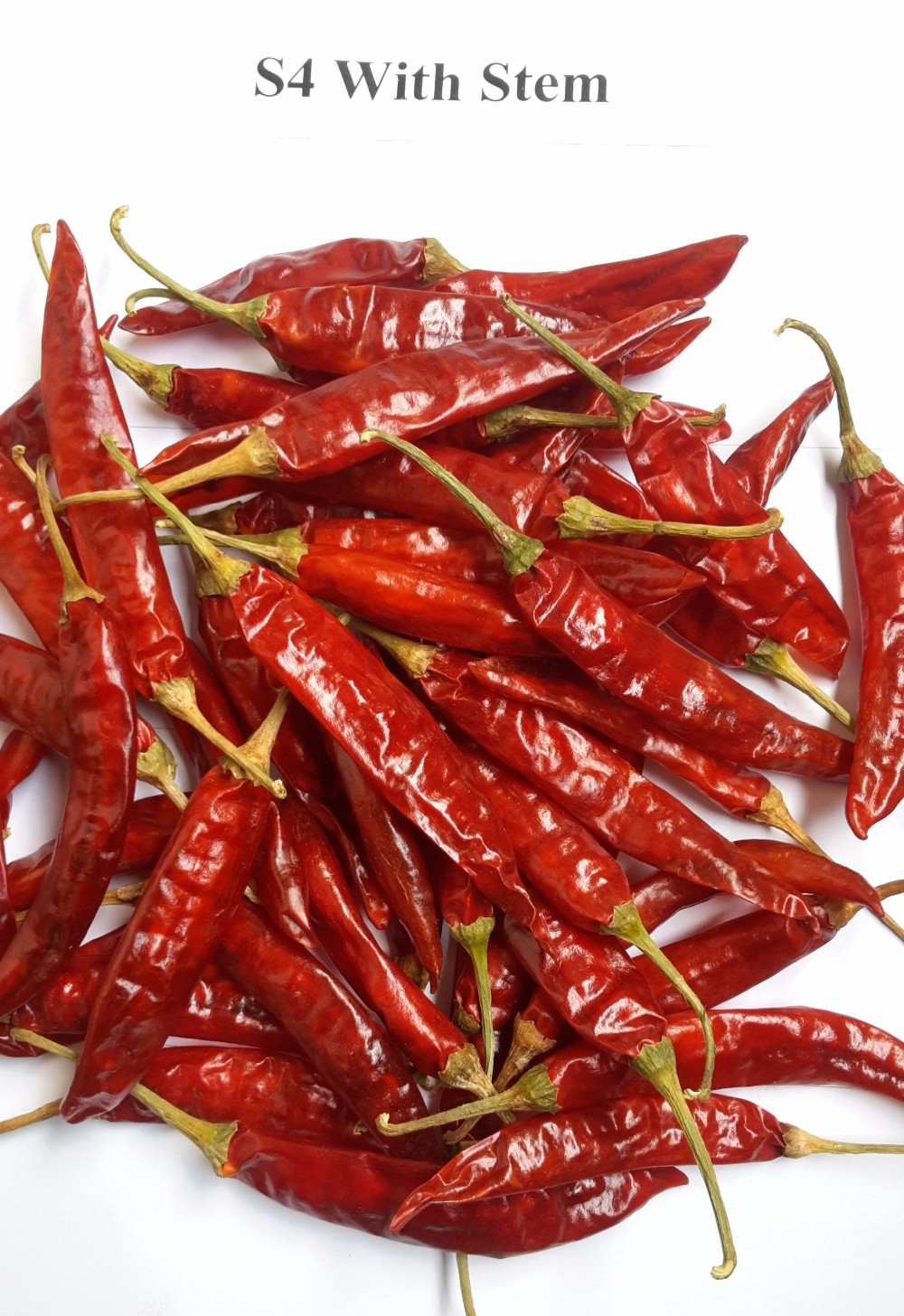 Red Chilli Whole 334
