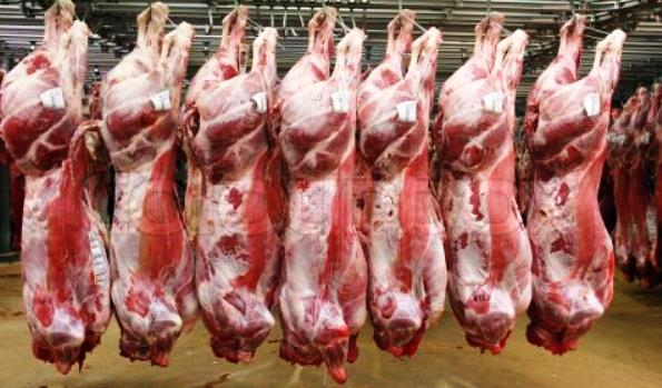 Top quality Australian Halal Lamb, Mutton and GoaT