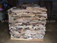 wet blue cow hides and Wet Salted Cow/Donkey Hides