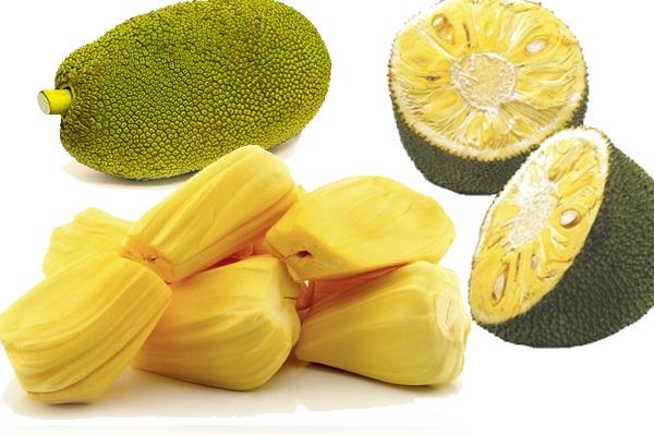 jackfruit, jackfruit suppliers and manufacturers at alibaba, Natural flower