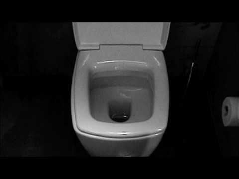 black square toilet seat.  Square Toilet Seat China Shape Shopping Guide