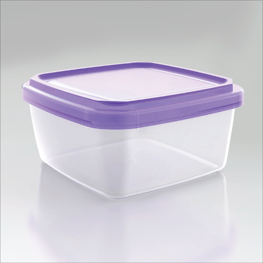 Fashion and trendy food storage container will be provided timely for your reference L021 Purple