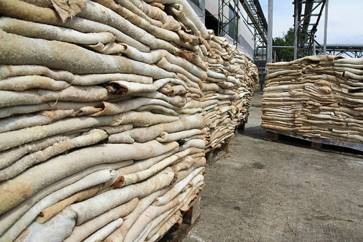 BULK HIDE FOR SALE NOW PRESENT IN USA