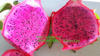 VIET NAM RED DRAGON FRUIT