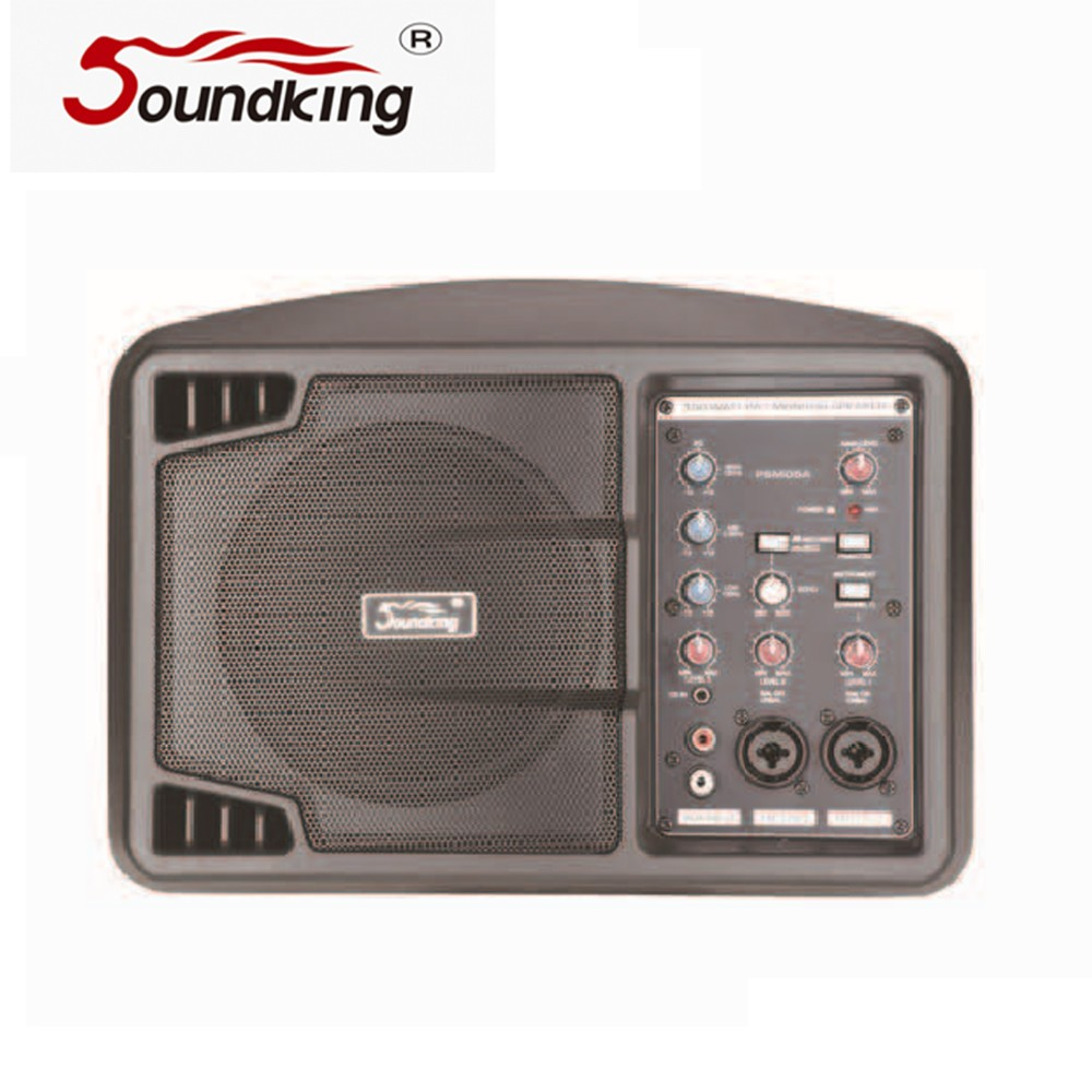 multi purpose active speaker with class-D amplifier technology