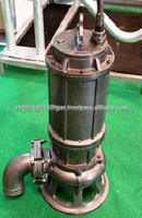 DMR PUMP / Submersible Manure Pump